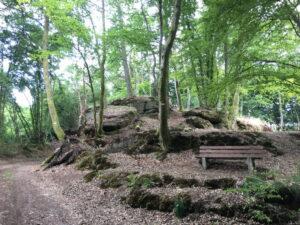 Im Wald eine Gruppe Bäume auf Felsen mit Sitzbank