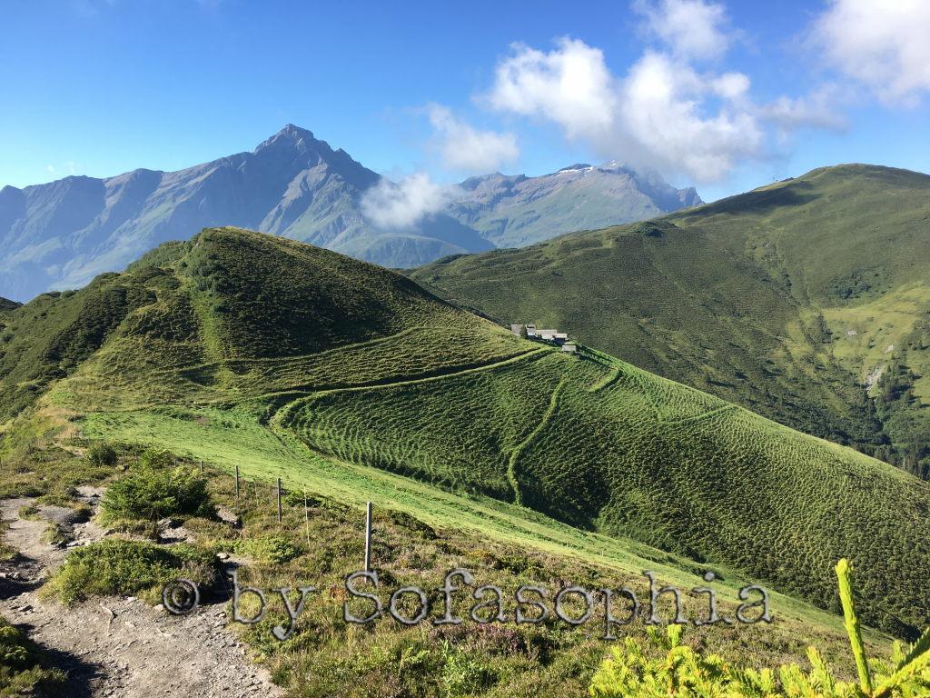 Nochmals ein ähnlicher Bildausschnitt, diesmal mit Alp Bischola im Bild, Alpwiesen, Hügel, Berge unter Blauhimmel.