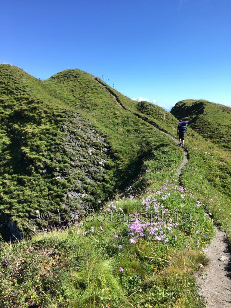 Irgendlink strebt auf dem Gratweg dem nächsten Gipfel entgegen. Von weitem fotografiert.
