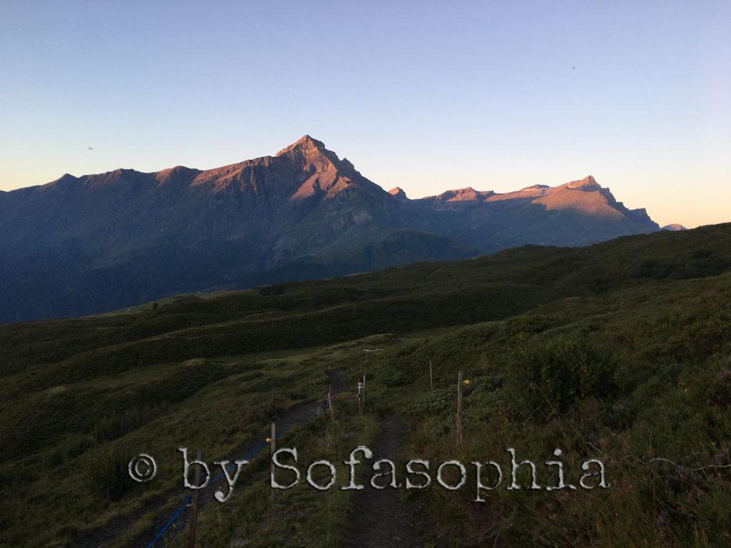 Die Bergspitzen sind schon ein bisschen mehr in rose Morgenlicht getaucht. Die Wiesen im Vordergrund sind noch im Schatten.