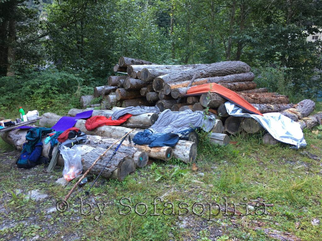 Auslegeordnung: Auf gefällten Baumstämmen sind unsere Sachen ausgebreitet, damit die Sonne die Morgenfeuchte trocknen kann.
