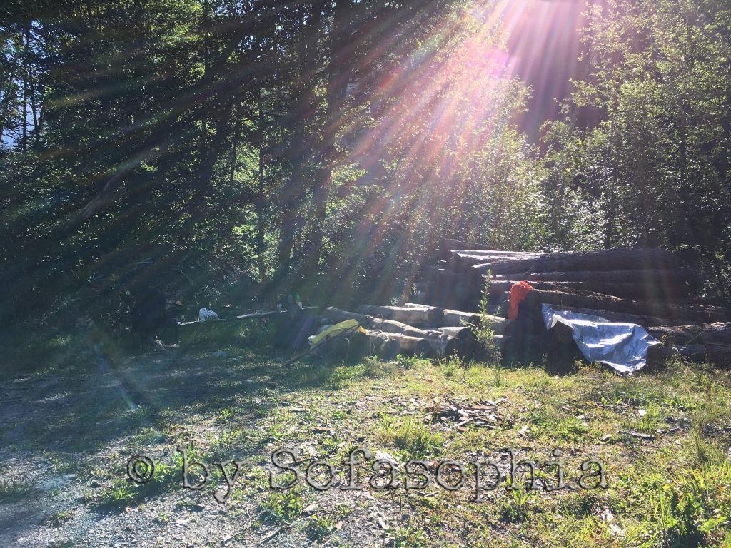 Schon fast ist alles eingepackt. Die Sonne hat unseren Platz erreicht.