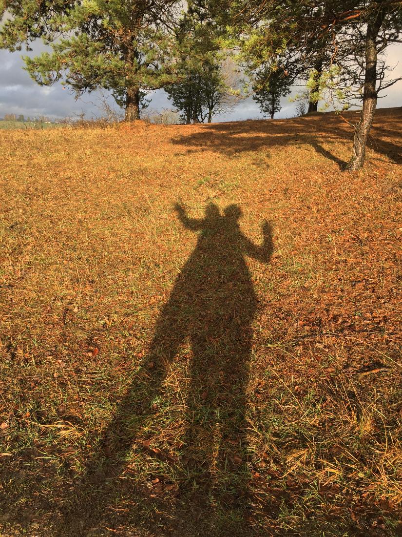 Im Vordergrund der Schatten zweier Menschen auf gelbgrüner Winterwiese. Im Hintergrund Bäume und wolkiger Himmel mit Sonne. Der Schatten besteht aus drei Beinen, zwei Armen, zwei Köpfen und einer breiten Mitte.