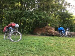 Unserer Räder, vollgepackt, auf einer Wiese, dahinter Bäume