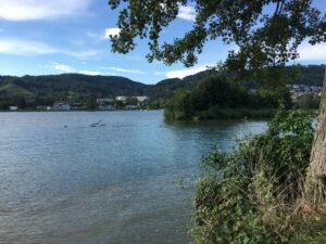 Rhein, Blauhimmel, Ufer