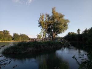 Aareufer, Abendstimmung, Brücke gegenüber